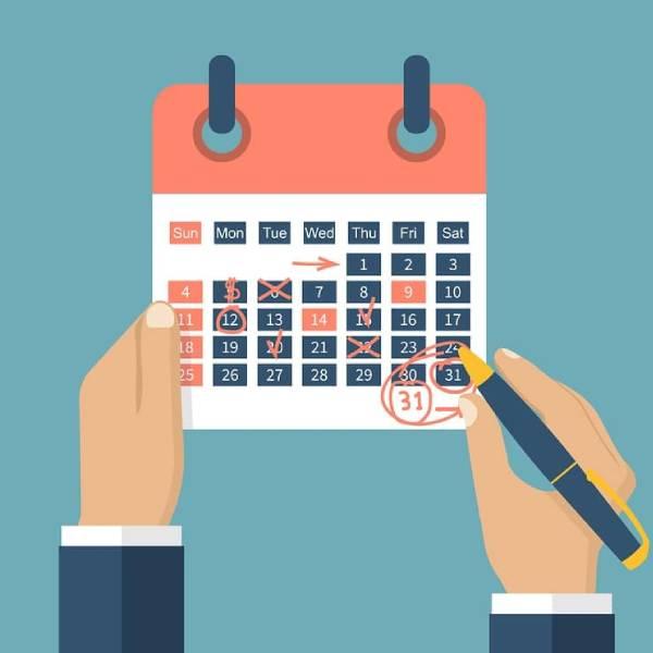Regular posting schedule Service